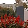 Осень в парке им. Н. Островского